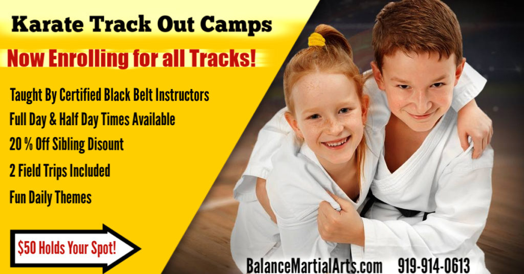Balance Martial Arts Karate Morrisville Cary