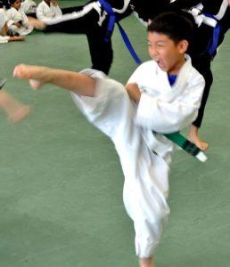 Martial Arts Summer Camp - Balance Martial Arts