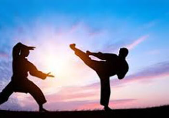 New Classes Offered: Judo & Kung Fu!